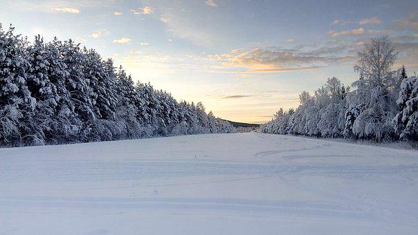 Wintry, Lapland, Sweden, Snow Landscape