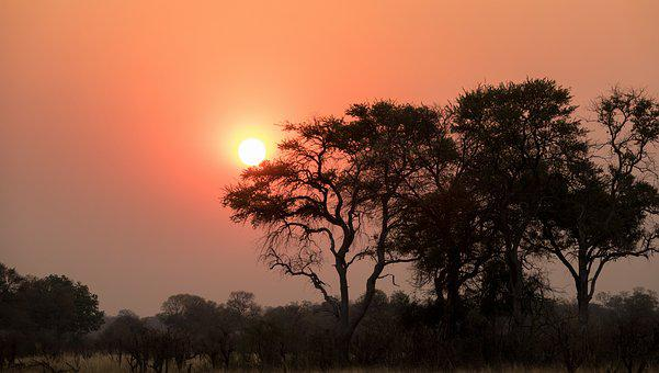 Sunset, Botswana, Nature Shots, Afterglow, Africa