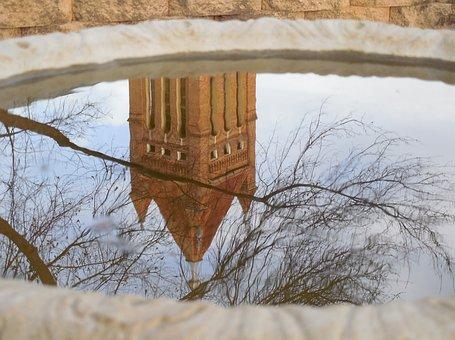 Reflection, Mirror, Mirrored, Image, Water, Garden
