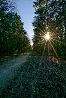 Sun, Rays, Light, Sunny, Nature, Sun Rays, Sky