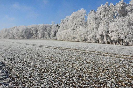 Snow, Sun, Winter, Nature, Mountains, Afternoon Sun