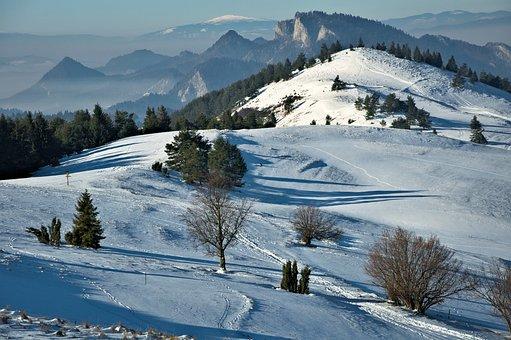 Landscape, Mountains, Pieniny, Durbaszka, Poland, View