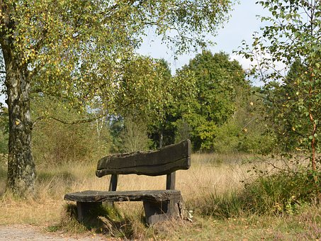 Wooden Bench, Landscape, Recovery, Rest, Seat, Nature
