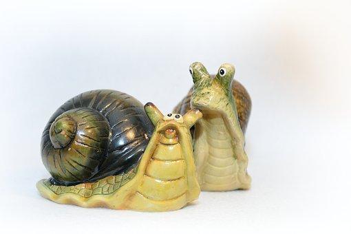 Worm, Snail, Conch, Slowly, Garden, Spiral, Invasion