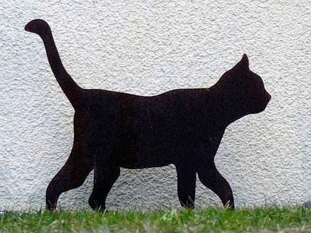 Cat, Silhouette, Pet, Animal, Black, Adidas, Weird