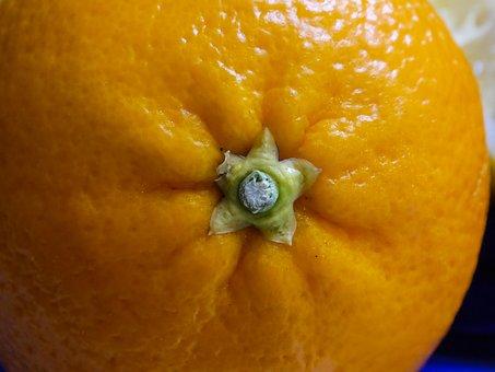 Fruit, Orange, Food And Drink, Vitamin C, Citrus