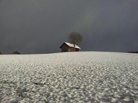Wintry, Snowfield, Snow Landscape