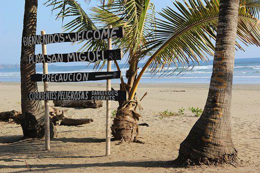 Costa Rica, Palm Trees, Tropical, Beach, Characters