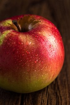 Apple, Fruit, Cd, Nutrition, Ripe, Summer, Garden
