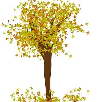 Tree, Tree Design, Leaves, Leaf, Autumn, Season, Nature