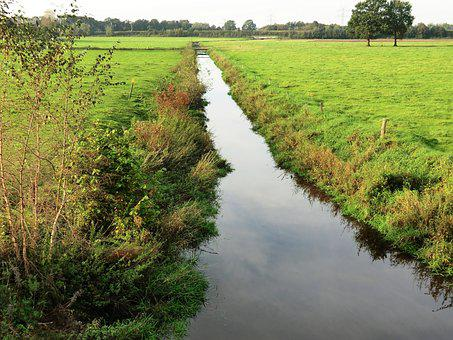 River, Reported, Au, Bach, Water, Landscape, Bank