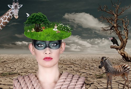 Woman, Desert, Tree Thoughtless, Presentation, Idea