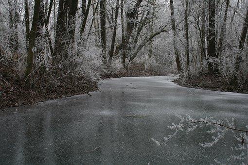 Winterwonderland, Ice, Snow, Winter, Cold, Frost, Tree