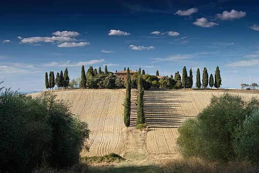 Tuscany, Italy, Fields, Meadow, Landscape, Scenic, Farm