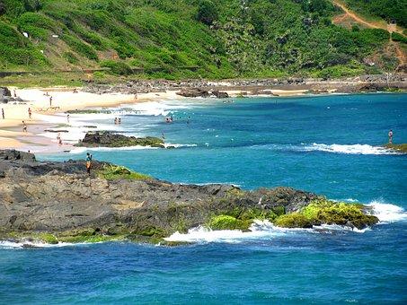 Orla, Nature, Mar, Beach, Landscape, Litoral, Ocean