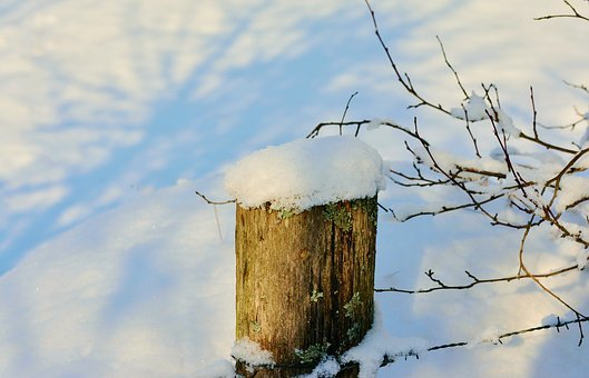 Winter, Fence Post, Snowy, Pile, Snow, Pasture, Cold
