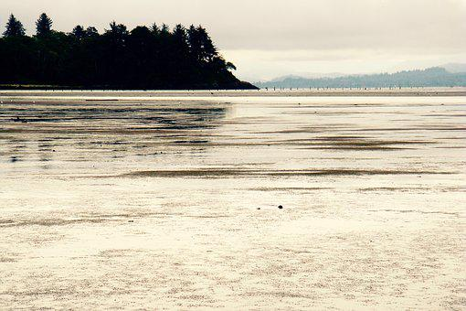 Flats, Tide, Ocean, Sand, Water, Sea, Coast, Mud