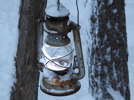 Later, Snow, Winter, Lapland, Finland, Tree