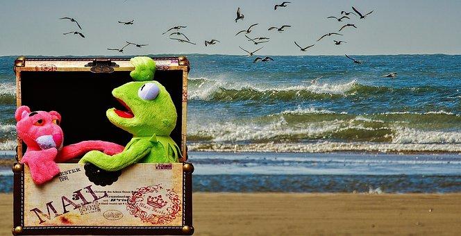 Kermit, Pink Red Panther, Box, Luggage, Send, Travel