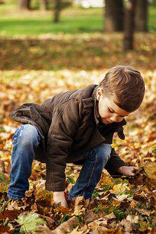 Toddler In The Park, Child Picking Up Leaves, Autumn