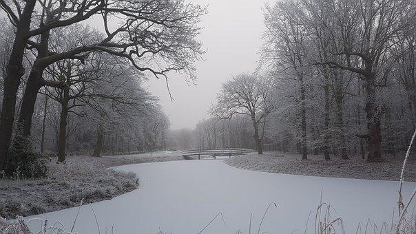 Winter, Snow, Ice, Tree, Sunset, Sandbox, Willow
