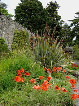 Bodnant, Gardens, Wales, Architectural, Plants