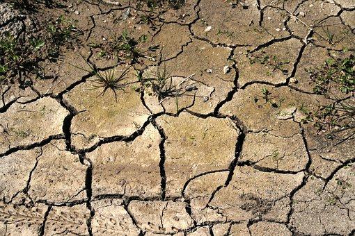 Drought, Field, Thirst, Cracks, Soil, Dry, No Rain
