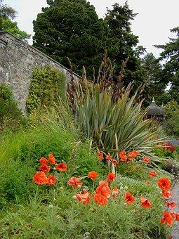 Bodnant, Gardens, Wales, Architectural, Plants