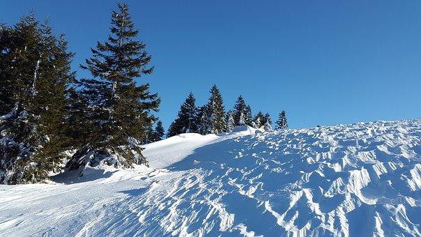 Wind Gangeln, Snow, Winter, Ice, Cold, Wind, Zastrugi