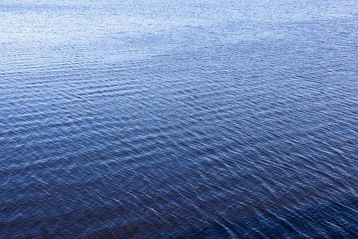 Abstract, Aqua, Aquatic, Backdrop, Background, Blue