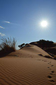 Desert, Tracks In The Sand, Africa, Sand, Trace, Away