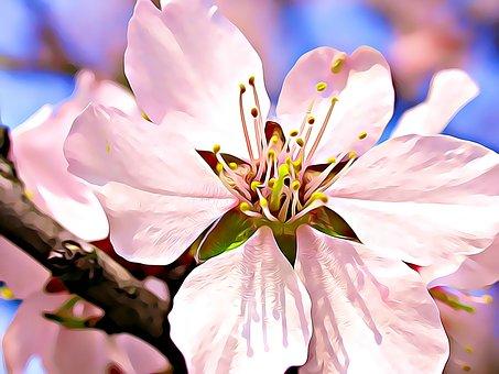Flower, Spring, Bloom, Digital, Painting