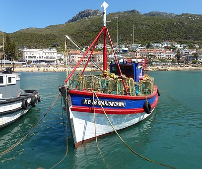 Fishing Boat, Lobster Traps, Cape Town, Harbour