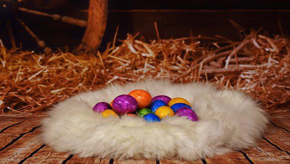 Easter, Colorful Eggs, Stall, Hay, Lambskin