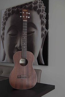 Guitar, Instrument