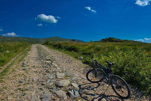 Mountain, Bike, Mountain Bike, Bicycle, Biking, Sport