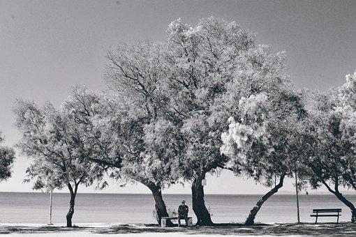 Black And White Lasndscape, Seascape Portrait
