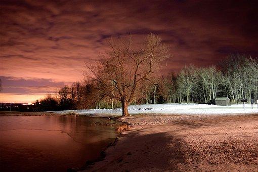 Lake, Tree, Winter, Snow, Red, Light, Night, Evening