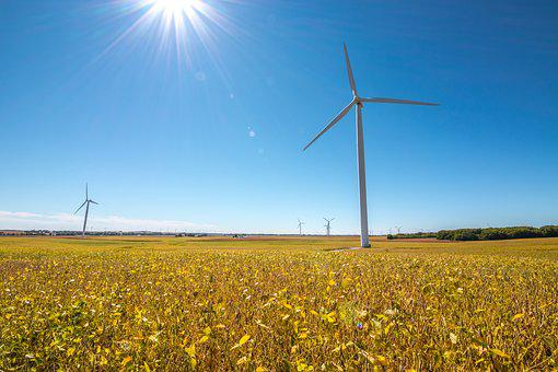Wind Turbine, Windmill, Harvest, Beans, Blue, Yellow