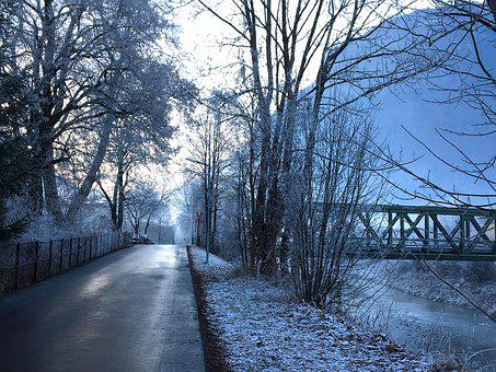 Winter, Wintry, Back Light, Hoarfrost, Cold, Mood