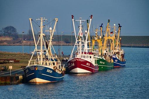 Büsum, Mecklenburg, Germany, Port, Boats, Fishing Boats