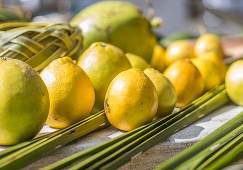 Hawaii, Farmer Market, Lemons, Limes, Market, Food