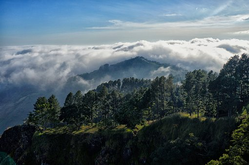 El Salvador, Mountain, Mountains, Fog, Clouds, Nature