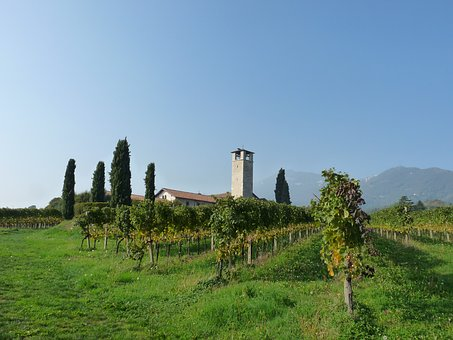 Church, Vineyards, Bergamo, Campaign