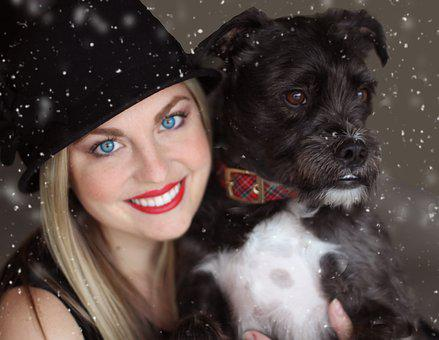 Dog, Pup, Mutt, Pretty Girl, Snow, Winter, Snowflakes