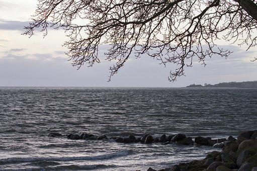 Sea, Water Edge, Clouds, Beach, Beautiful, Natural