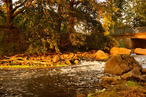 Golden October, Creek, Test Panel