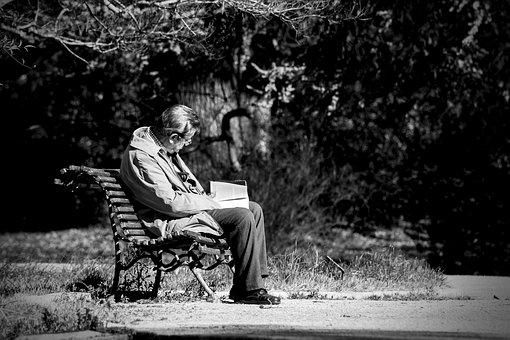 Solo, Reader, Old, Park, Old Sitting In The Park