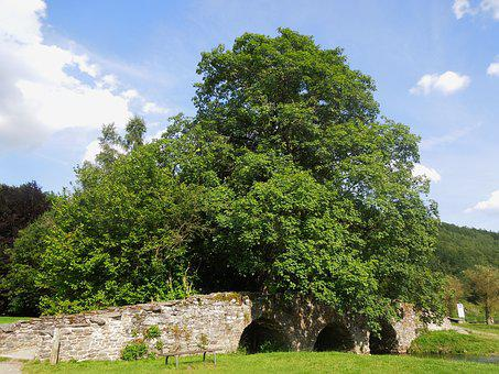 Bridge, Tree, Summer, Blue Sky, Landscape, Stone, Rural