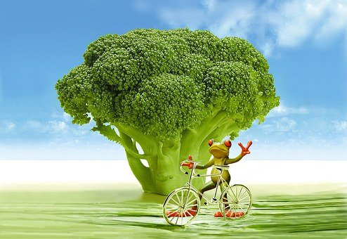 Appetite, Broccoli, Frog, Bike, Funny, Cute, Calories